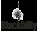 Blackbilly
